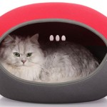 10 of the Best Cat Beds
