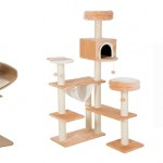 15 of the Best Cat Trees & Scratching Posts