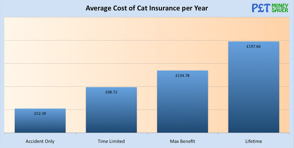 Average Cost of Cat Insurance per Year