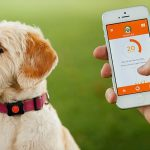 5 of the Hottest Smart Tech Pet Products