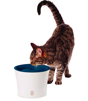 Catit Senses Water Fountain