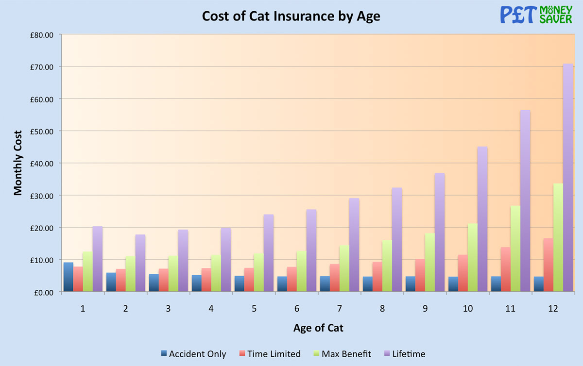 Cost of Cat Insurance by Age