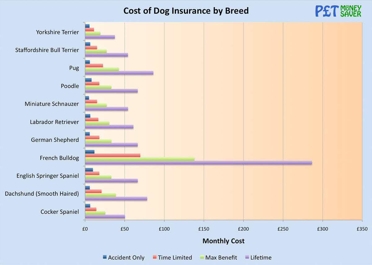 Cost of Dog Insurance by Breed