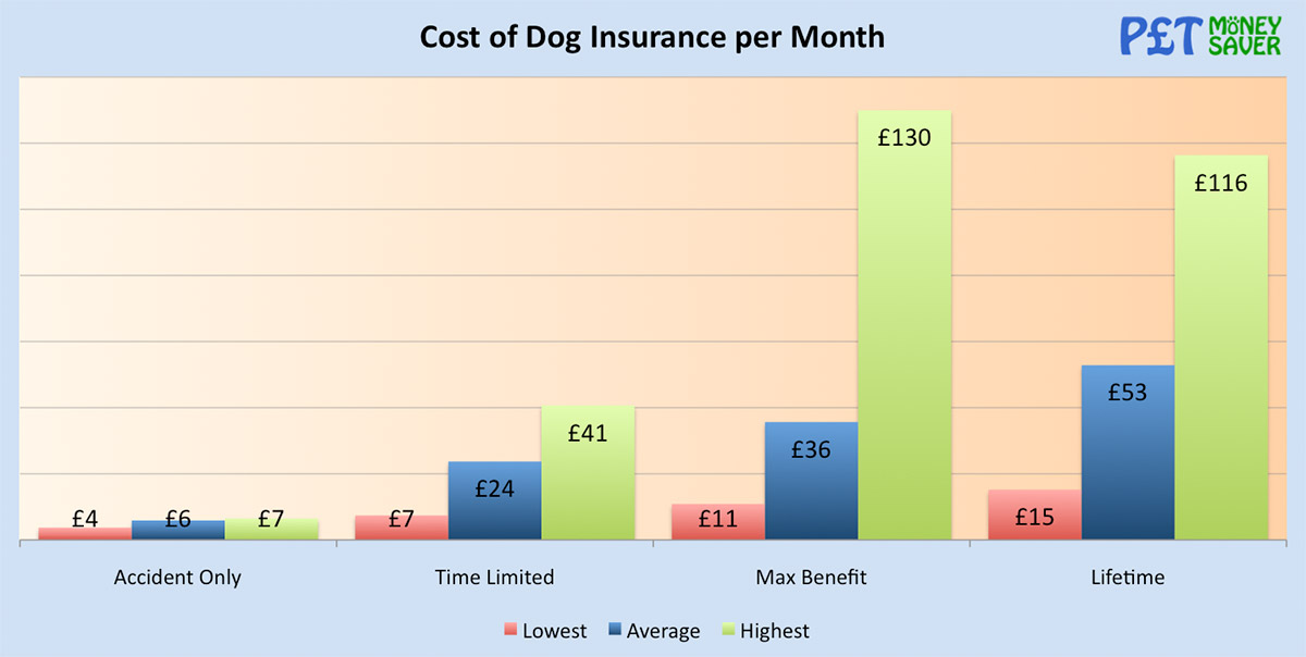 Cost of Dog Insurance per Month