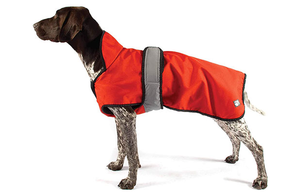 Keep your dog warm with an insulated dog coat