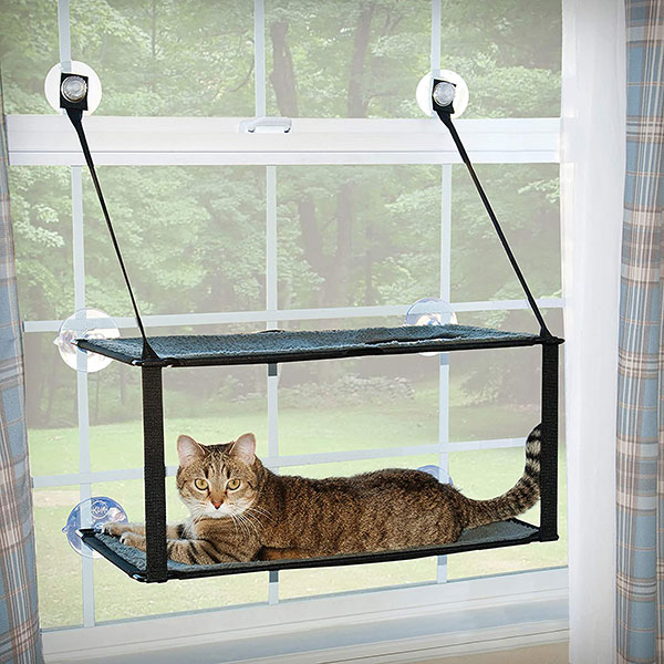 Double Layer Cat Window Bed