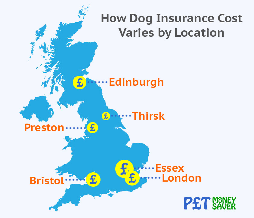 How Dog Insurance Cost Varies by Location