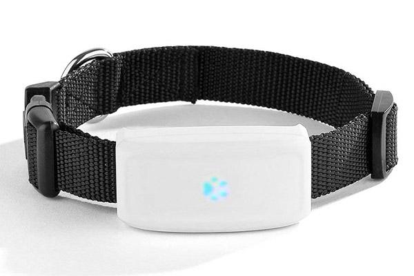 TKStar GPS Pet Tracker