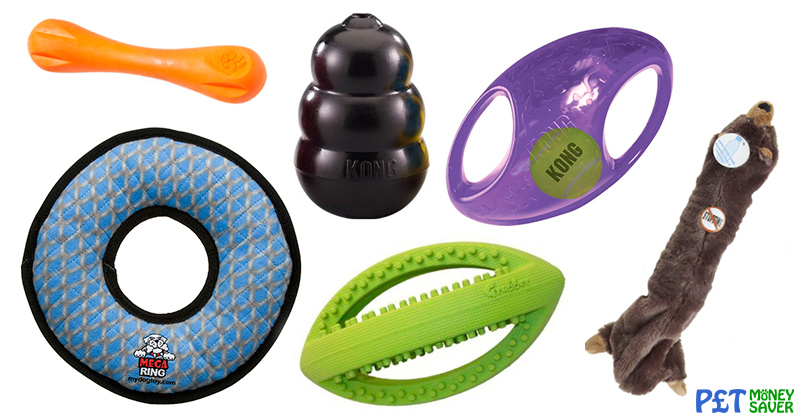 15 of the Best Tough Dog Toys | PetMoneySaver