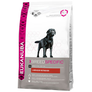 Cheap Eukanuba Adult Labrador Retriever 2.5kg