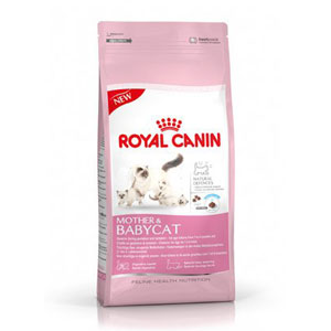 Cheap Royal Canin Feline Mother and Babycat 4kg