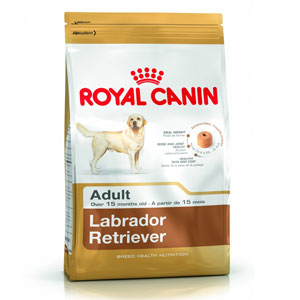 Cheap Royal Canin Labrador Retriever Adult 3kg