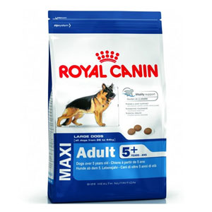 Cheap Royal Canin Maxi Adult 5+ 4kg