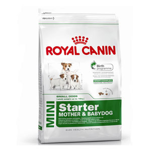 Cheap Royal Canin Mini Starter 3kg