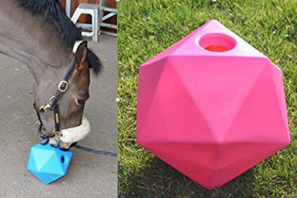 Horse Boredom Breaker