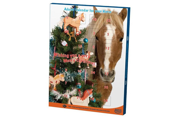Horse Christmas Advent Calendar