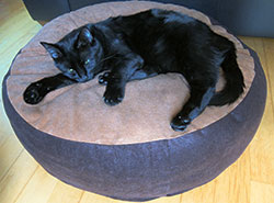 Lazy Days Round Cat Bed