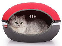 Little Arena Pet Pod