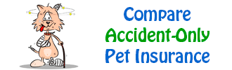 Compare Accident Only Pet Insurance Policies