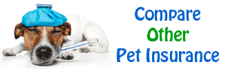 Compare Other Pet Insurance Policies
