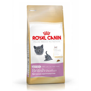 Cheap Royal Canin British Shorthair Kitten 2kg