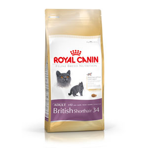 Cheap Royal Canin British Shorthair 4kg