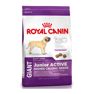 Cheap Royal Canin Giant Junior Active 15kg
