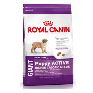 Cheap Royal Canin Giant Puppy Active 15kg