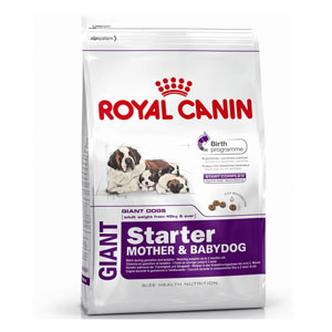 Cheap Royal Canin Giant Starter 15kg
