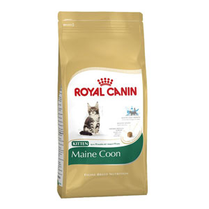 Cheap Royal Canin Maine Coon Kitten 10kg