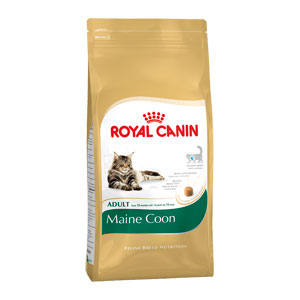 Cheap Royal Canin Maine Coon 4kg