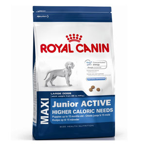 Cheap Royal Canin Maxi Junior Active 15kg